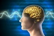 Работа с мозгом для креативных идей